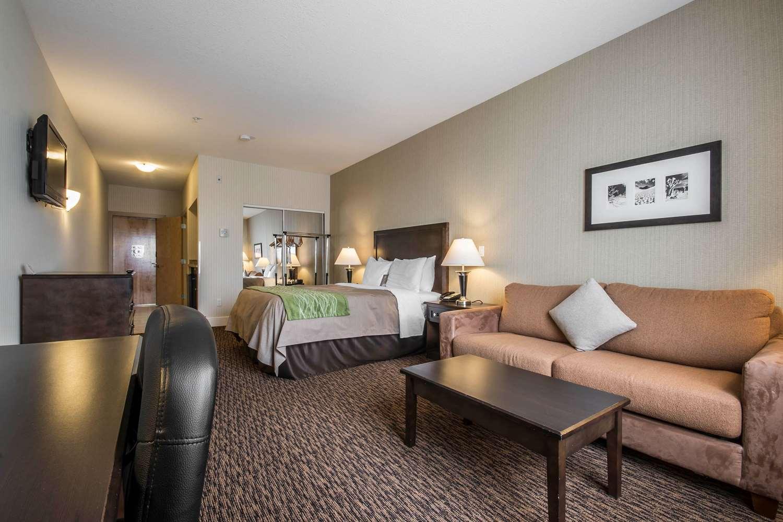 Room - Comfort Inn & Suites Surrey