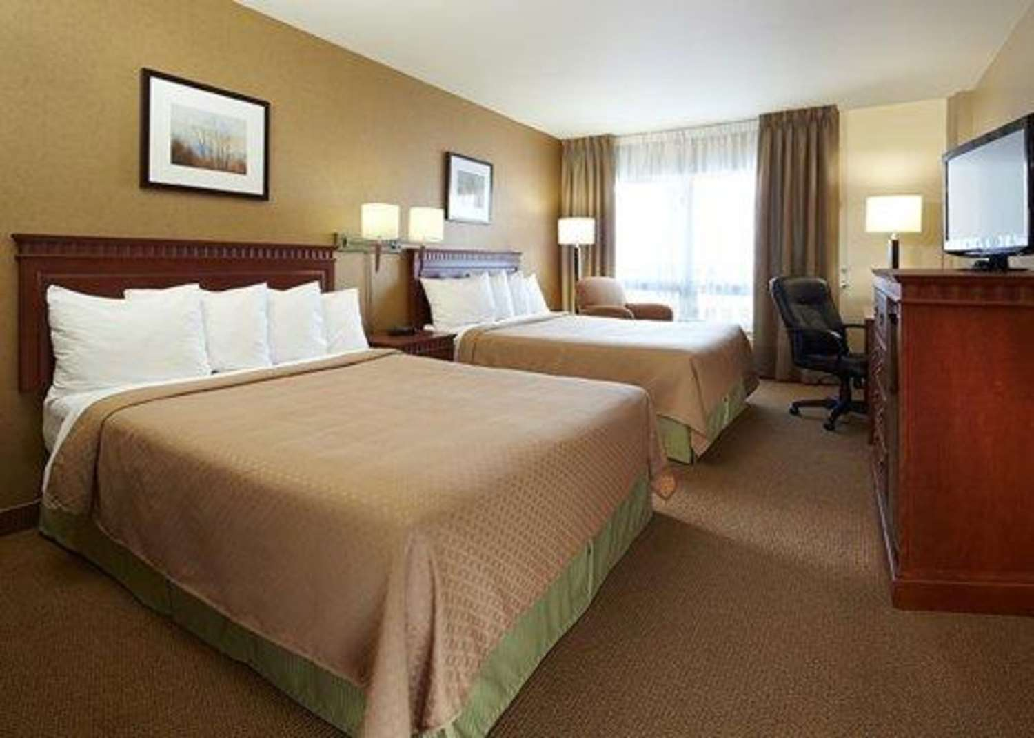 Room - Quality Inn & Suites Montreal Airport Dorval