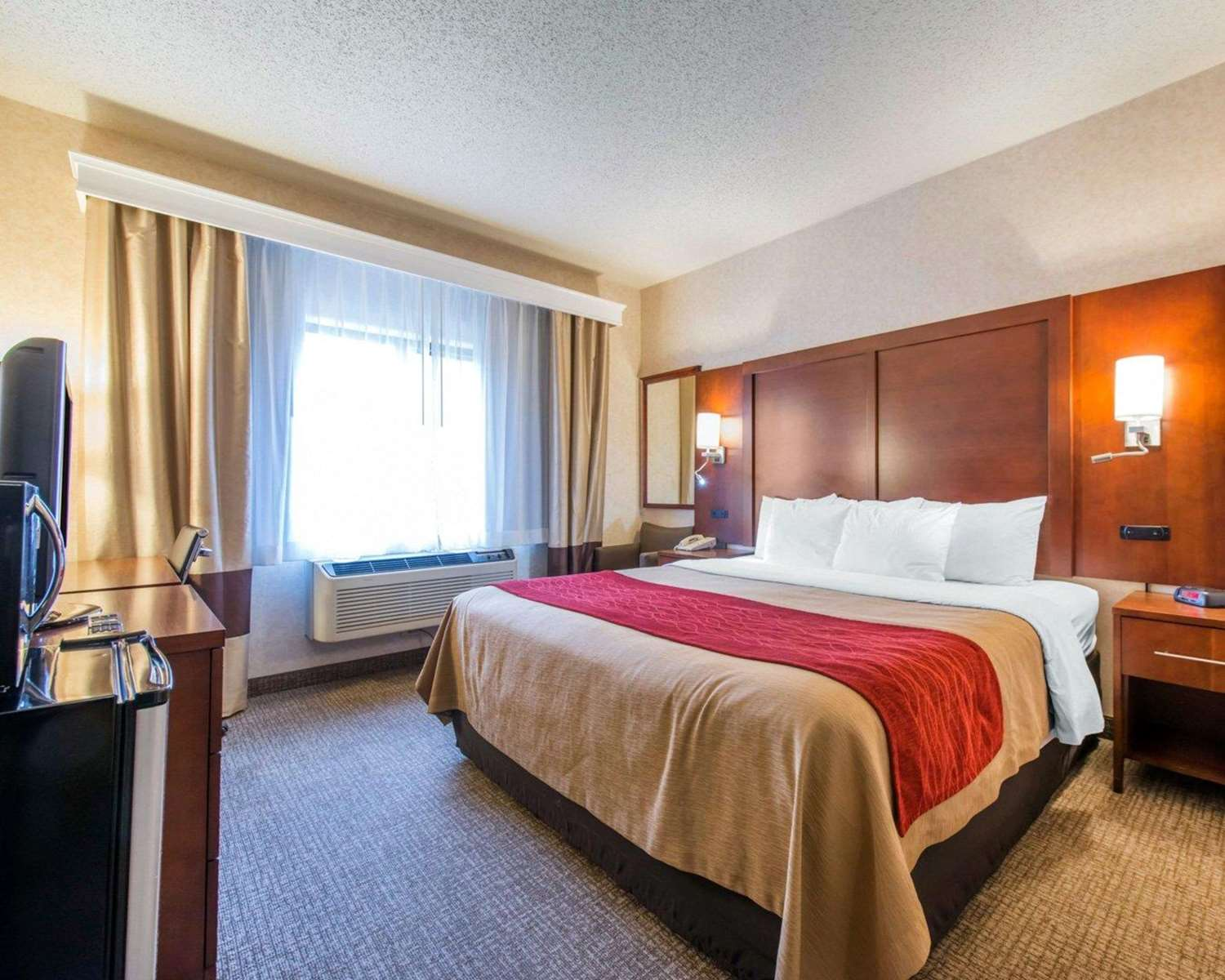 Room - Comfort Inn North Colorado Springs
