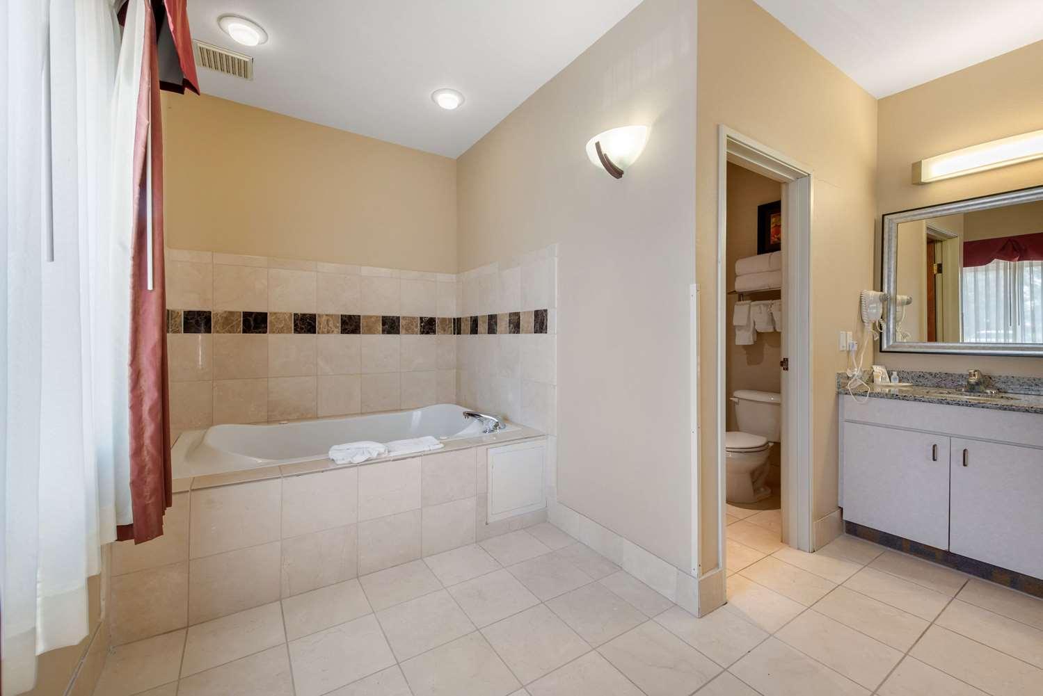 Suite - Comfort Suites Tech Center Englewood