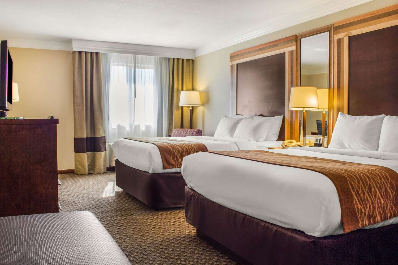 Room - Comfort Inn & Suites Durango