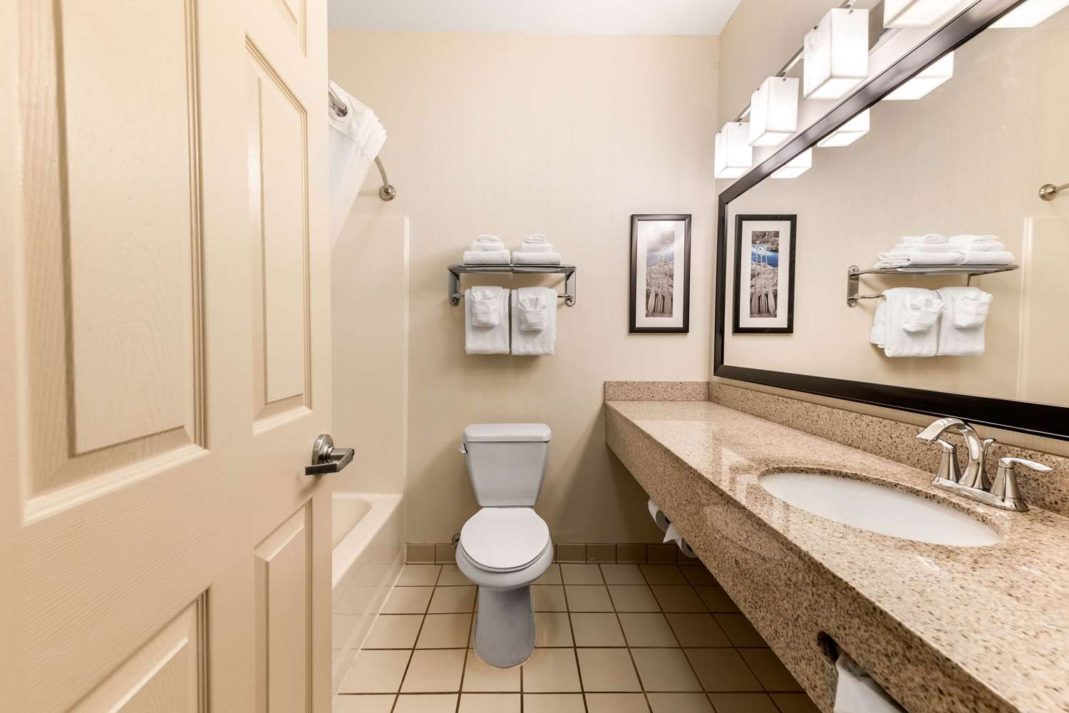 Room - Quality Inn & Suites Fort Collins