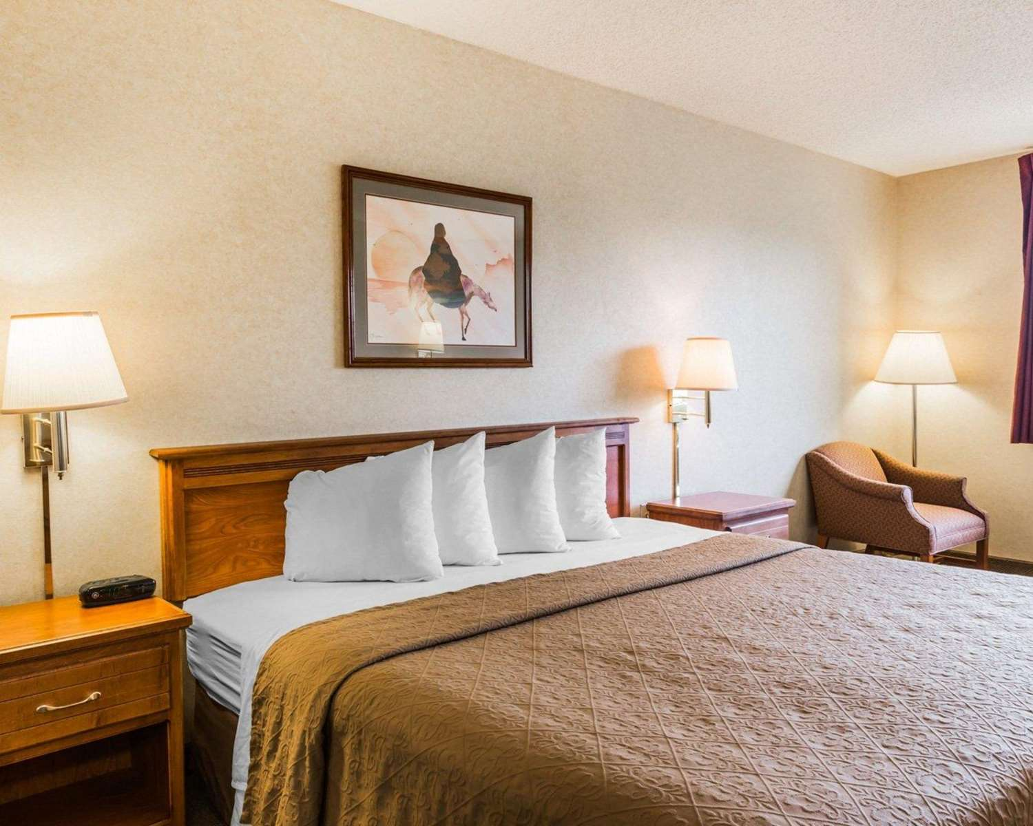 Room - Quality Inn & Suites Montrose
