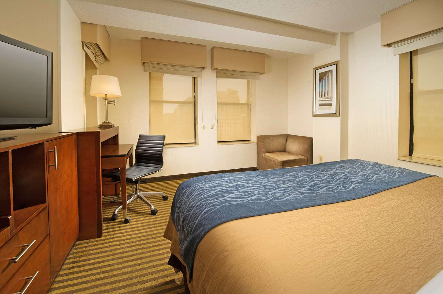 Room - Comfort Inn Downtown Convention Center DC
