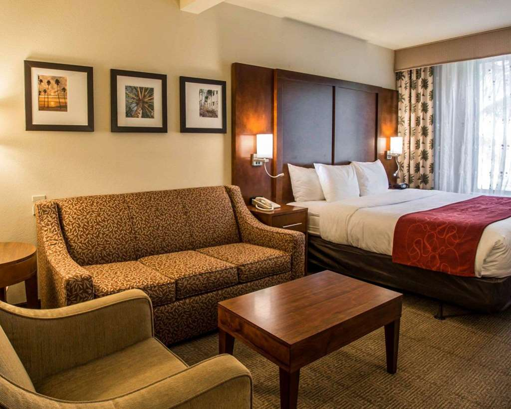 Accessible Guestroom with King Bed