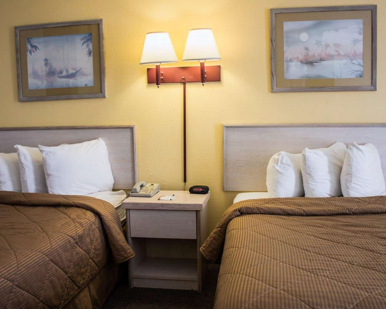 Room - Quality Inn & Suites St. Augustine Beach