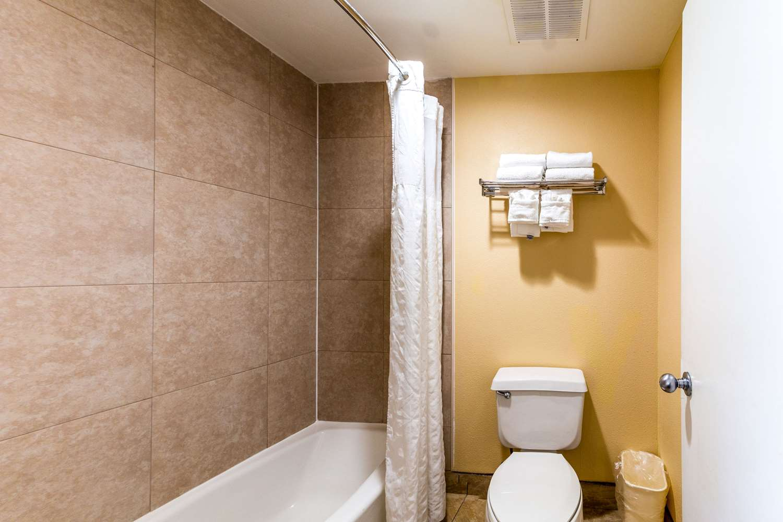 Room - Quality Inn & Suites Universal Studios Orlando