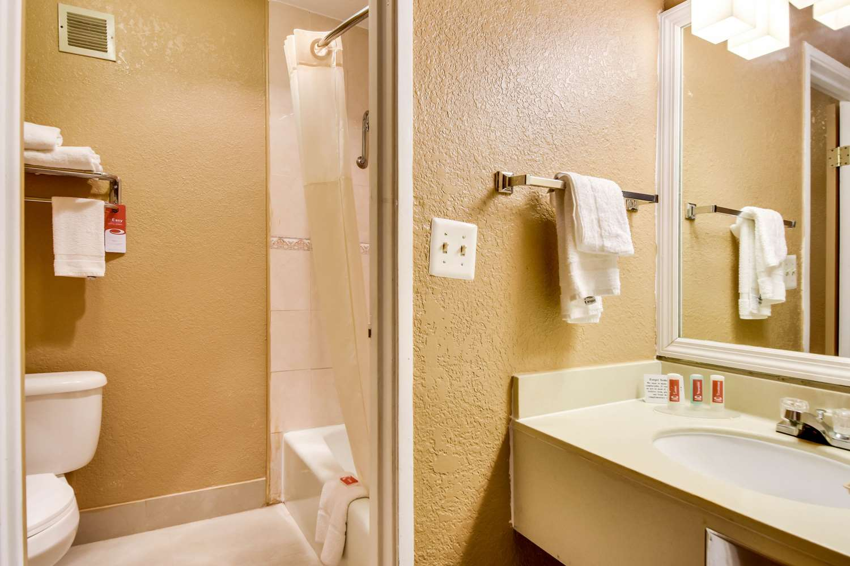 Suite - Econo Lodge Busch Gardens Tampa