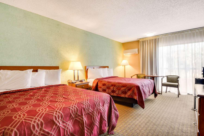 Room - Econo Lodge Busch Gardens Tampa