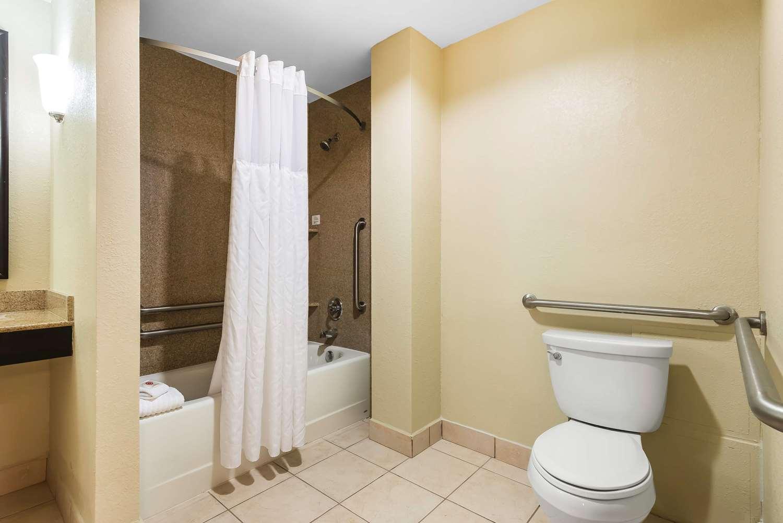 Room - Comfort Suites Northwest Tampa