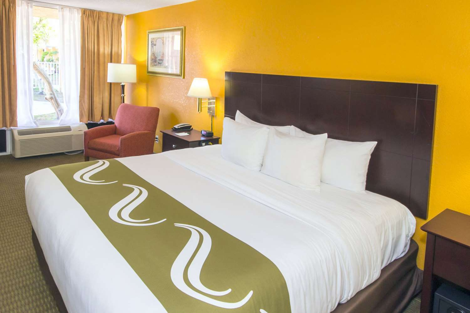 Room - Quality Inn & Suites Conference Center New Port Richey