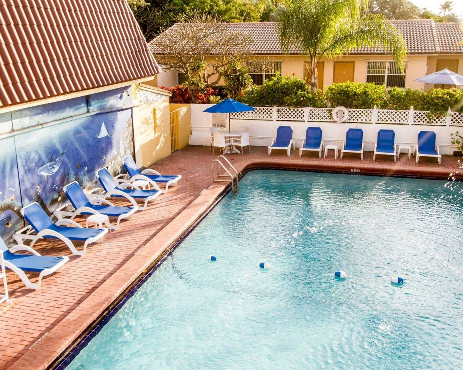 Pool - Comfort Inn Oceanside Deerfield Beach