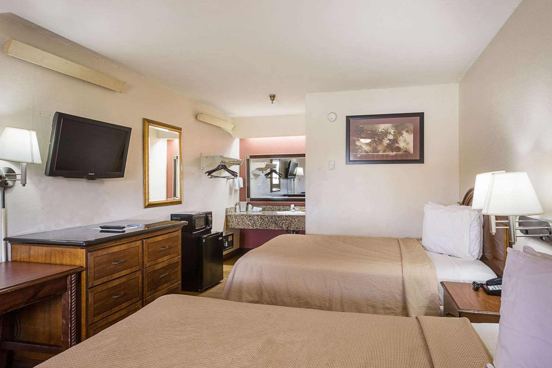 Room - Rodeway Inn Busch Gardens Tampa