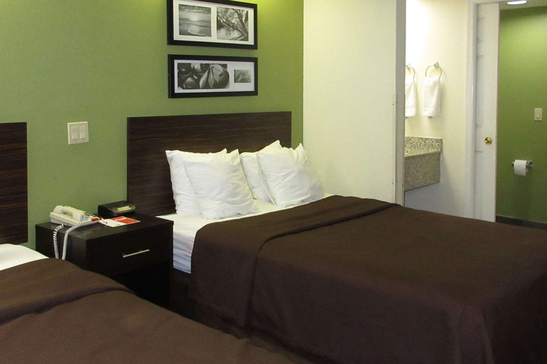 Room - Econo Lodge Albany