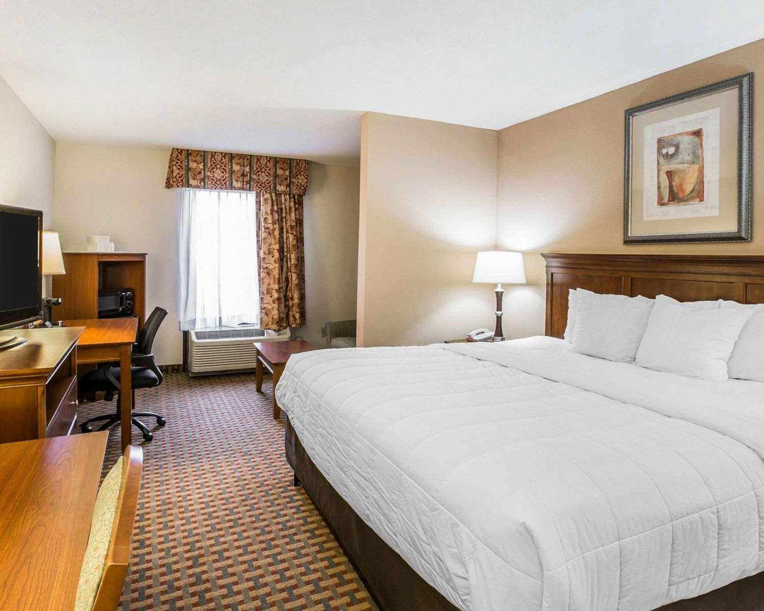 Room - Quality Inn & Suites Dawsonville
