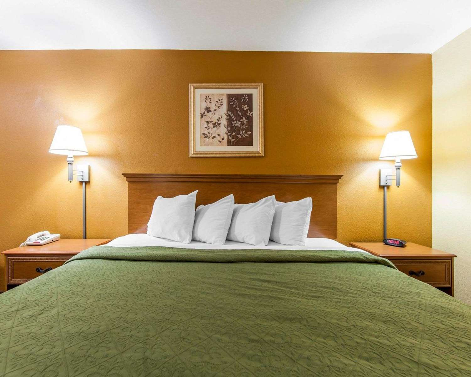 Room - Quality Inn & Suites Cartersville