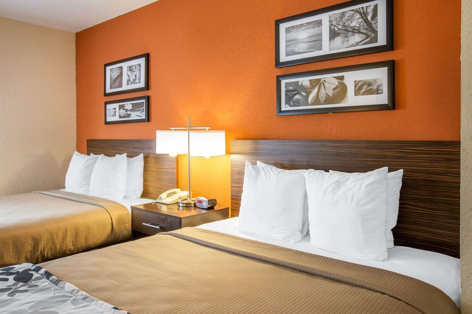 Suite - Sleep Inn & Suites Valdosta