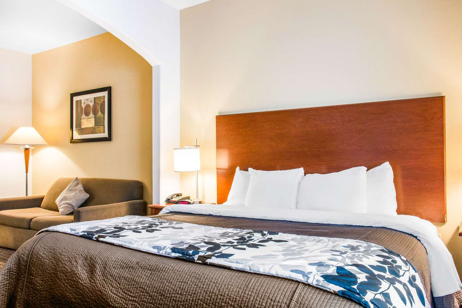 Suite - Sleep Inn & Suites Pooler