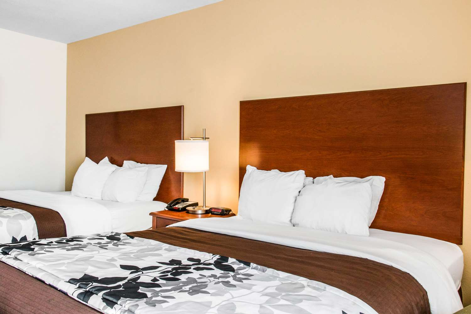 Room - Sleep Inn & Suites Pooler