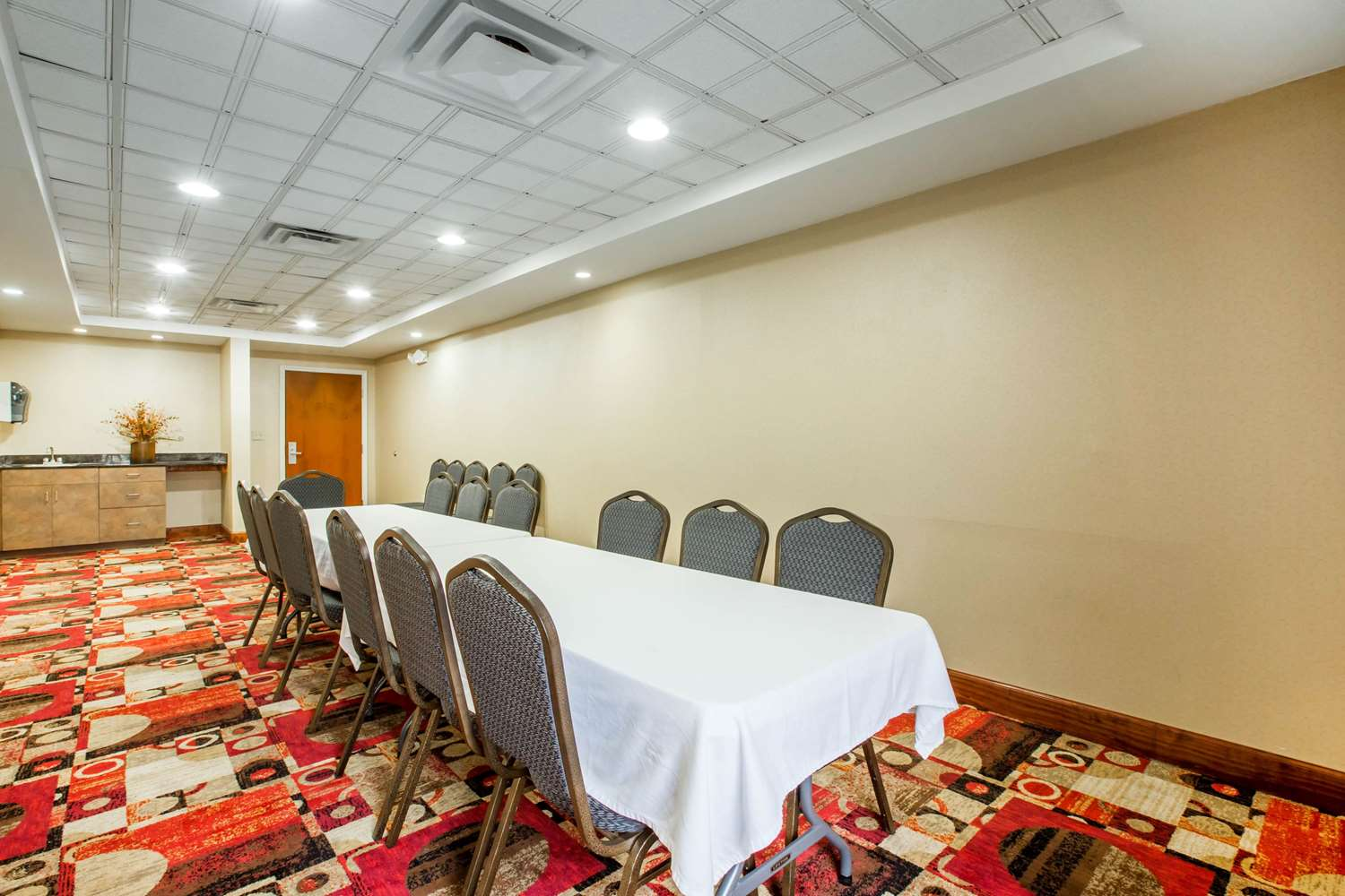 Meeting Facilities - Comfort Suites Gateway Brunswick