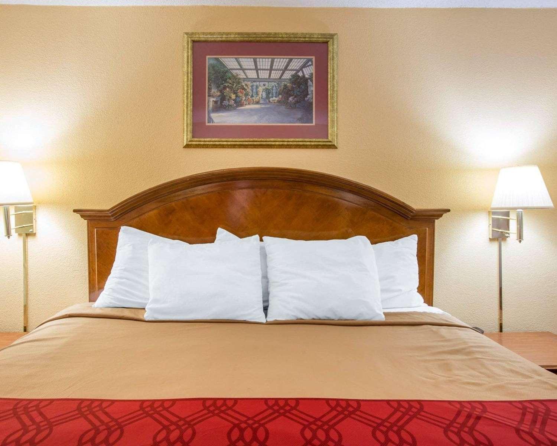 Room - Econo Lodge Inn & Suites Southwest Macon