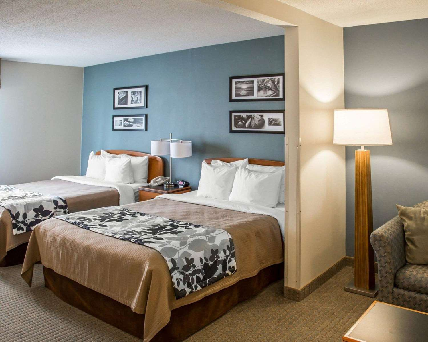 Suite - Sleep Inn & Suites Davenport