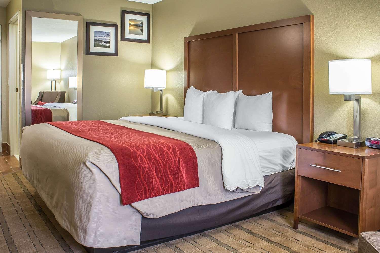 Room - Comfort Inn & Suites Cedar Rapids