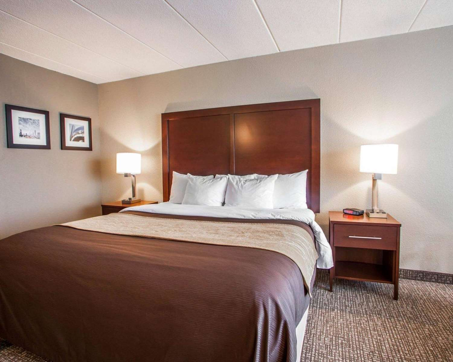 Room - Quality Inn & Suites Orland Park