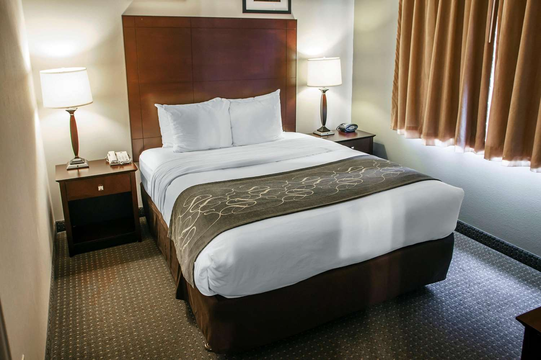 Room - Comfort Suites Elgin