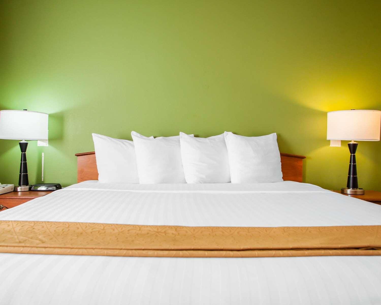 Room - Quality Inn Bolingbrook