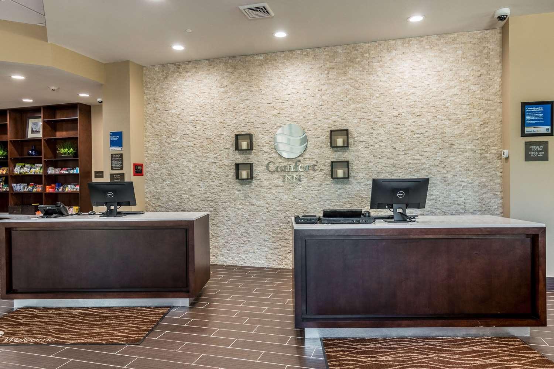 Lobby - Comfort Inn Edwardsville
