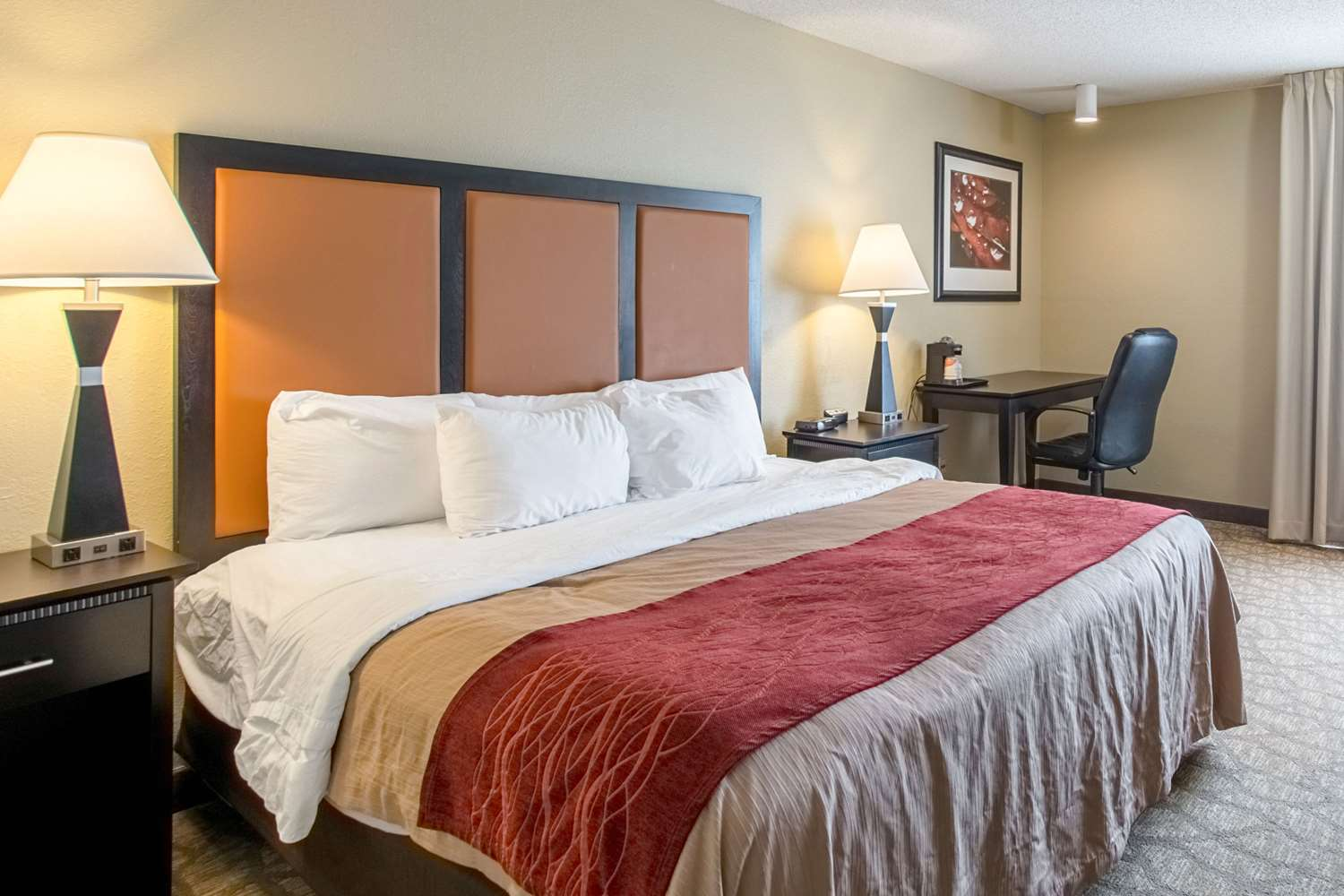 Room - Comfort Inn East Evansville