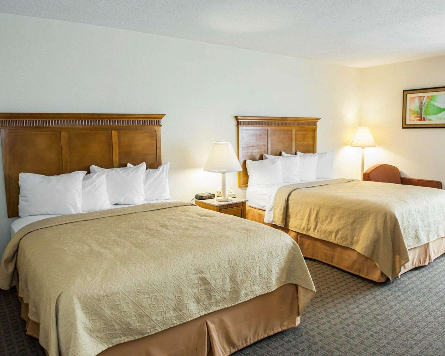 Room - Quality Inn & Suites Speedway Indianapolis