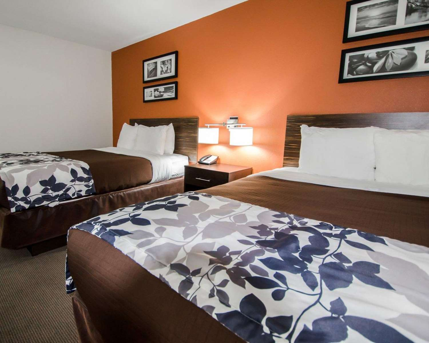 Room - Sleep Inn & Suites & Conference Center Indianapolis