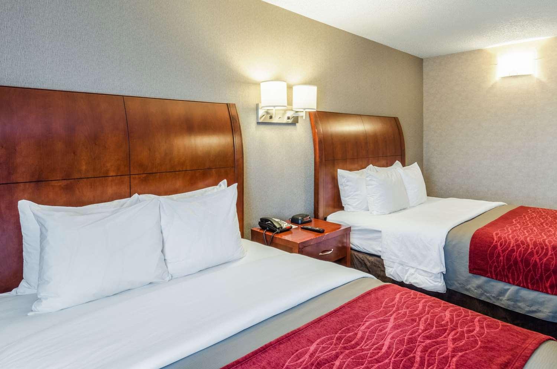 Room - Comfort Inn & Suites West Springfield