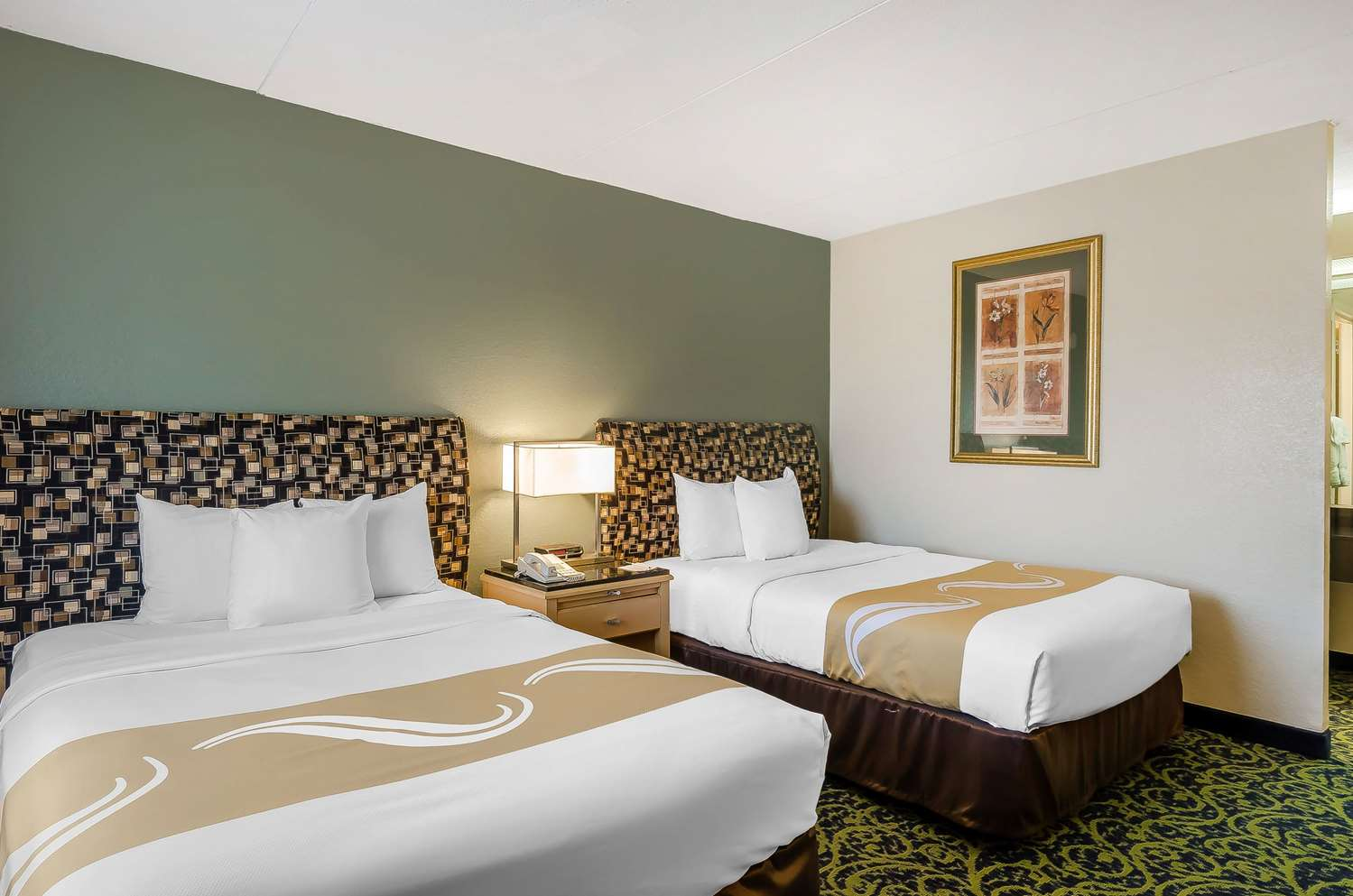 Room - Quality Inn & Suites Lexington