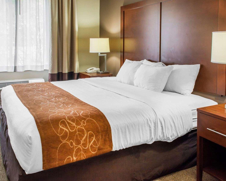 Suite - Comfort Suites Waldorf