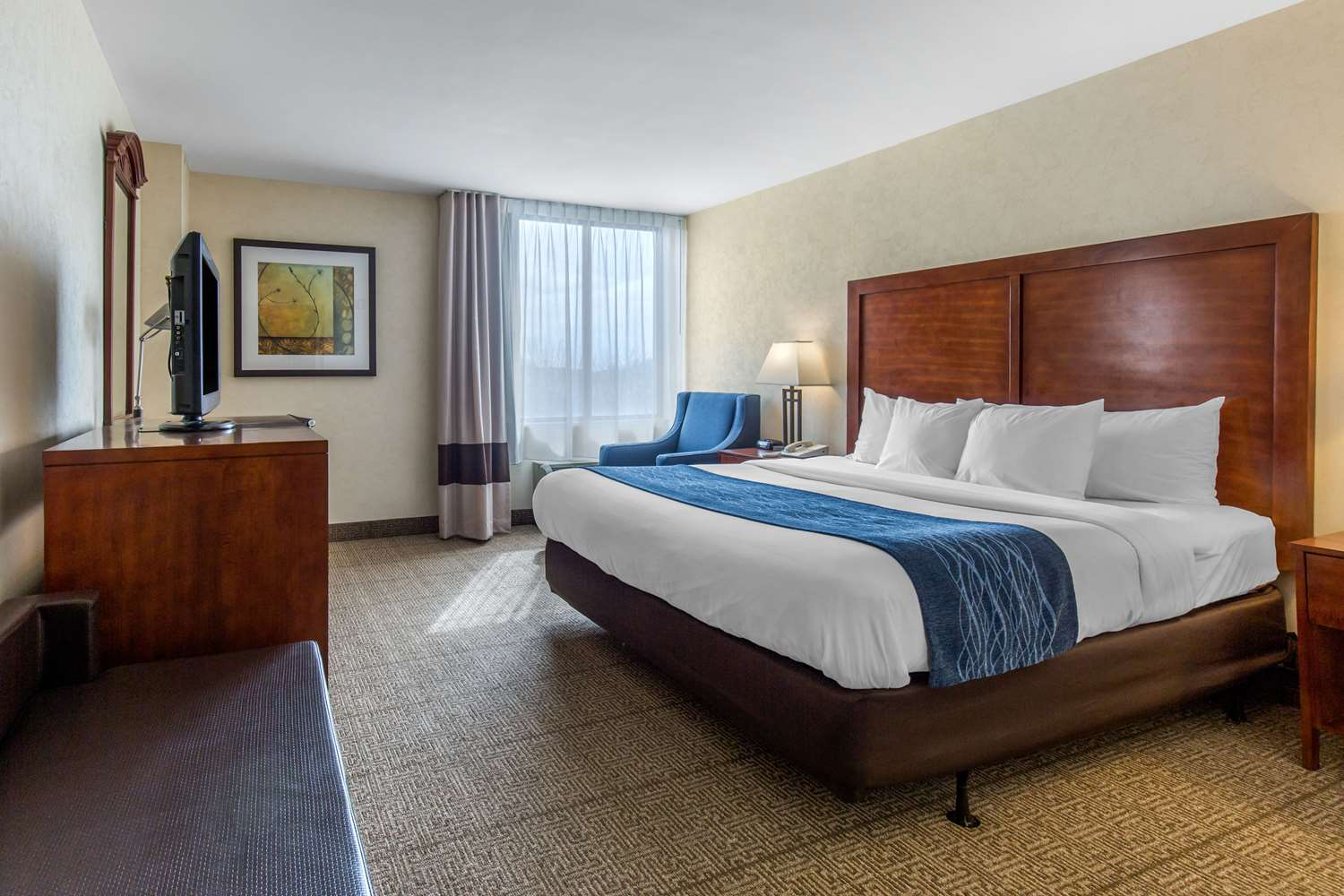Room - Comfort Inn Conference Center Hotel Bowie