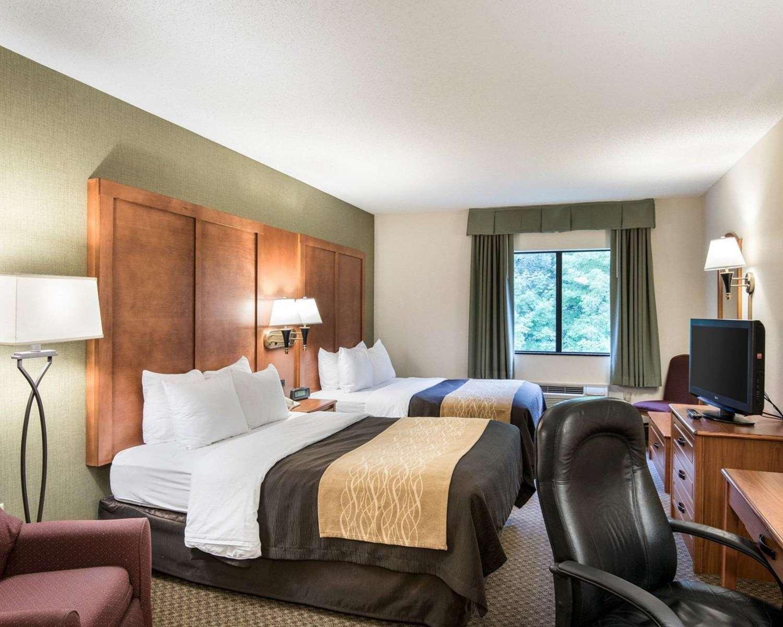 Room - Comfort Inn & Suites LaVale