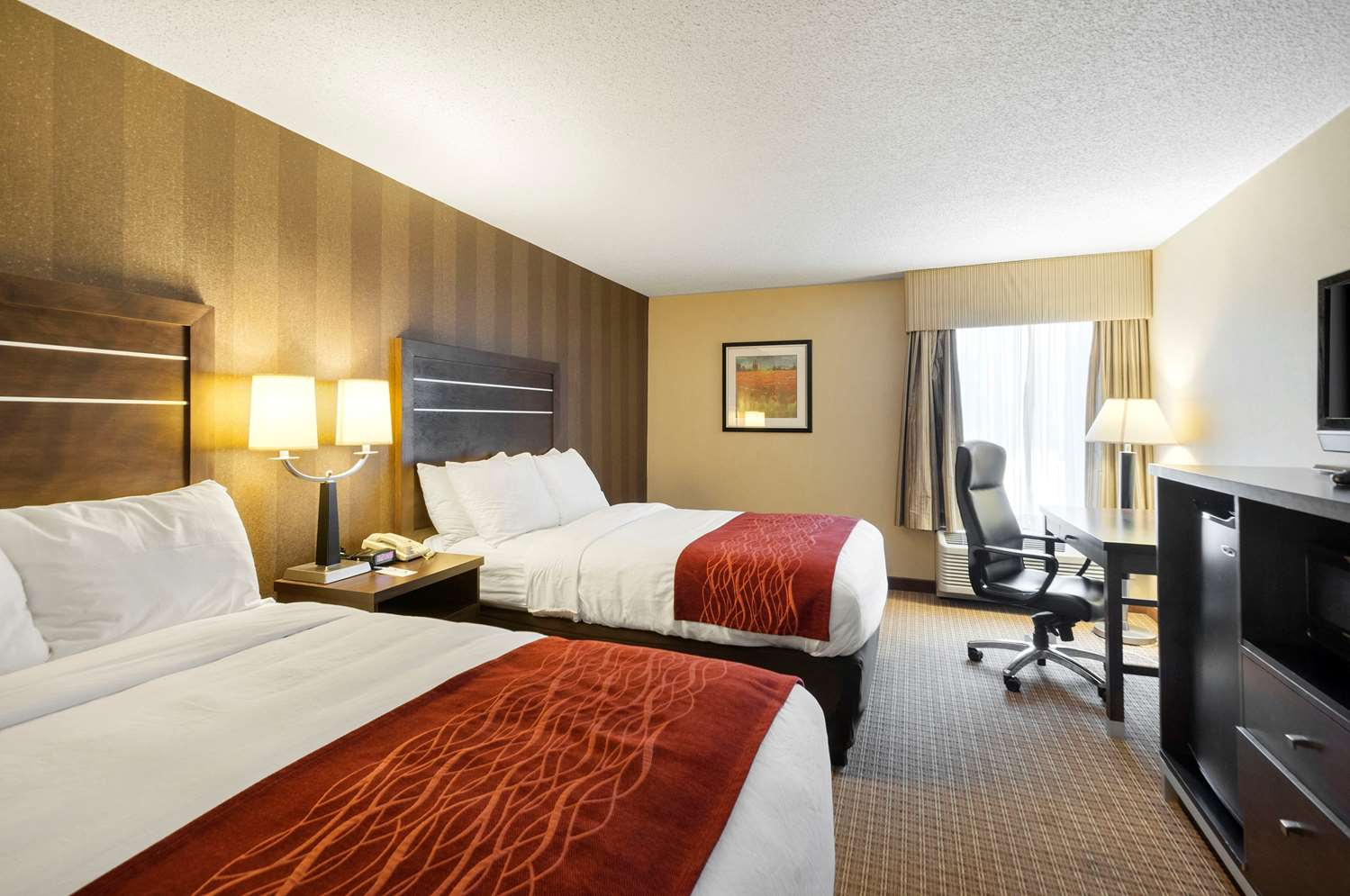 Room - Comfort Inn & Suites Edgewood