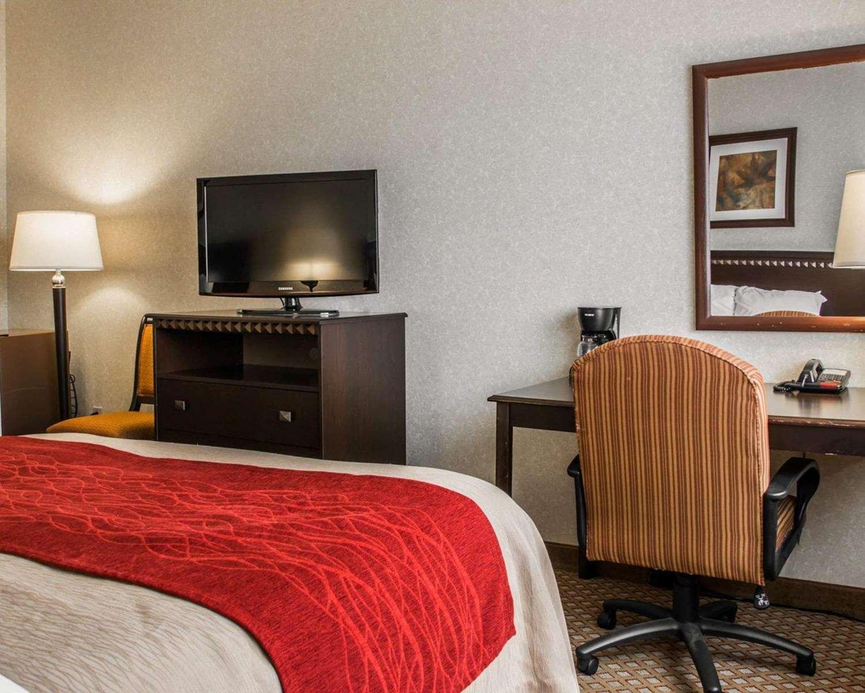 Room - Quality Inn & Suites Waterford