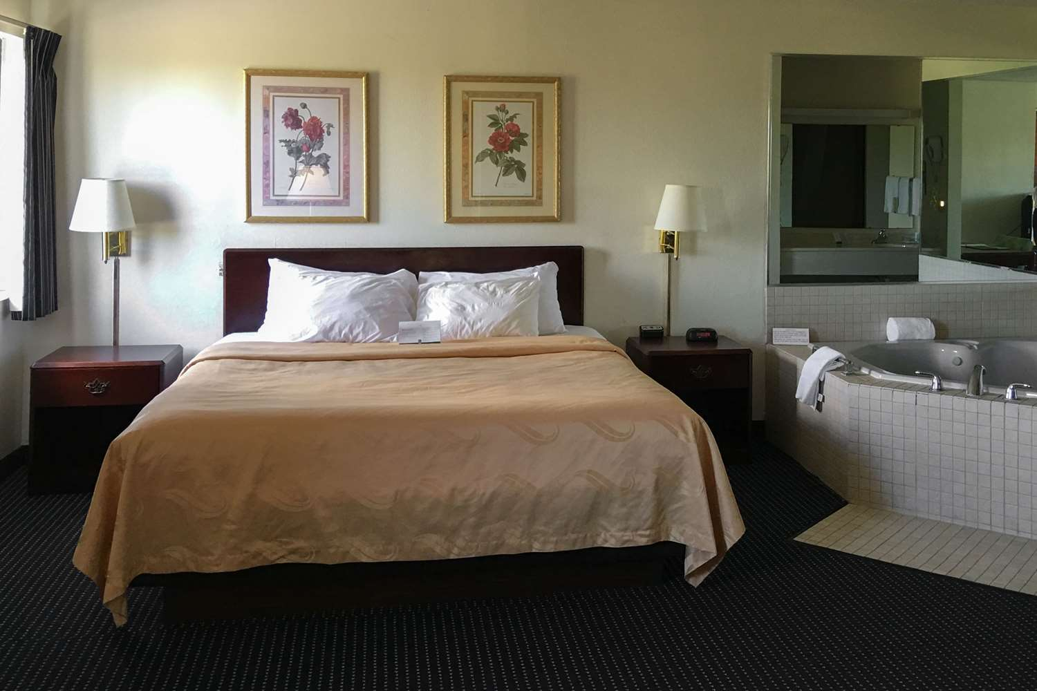Suite - Quality Inn & Suites Dundee