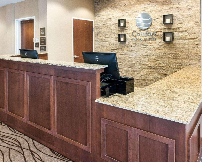 Lobby - Comfort Inn & Suites Rochester
