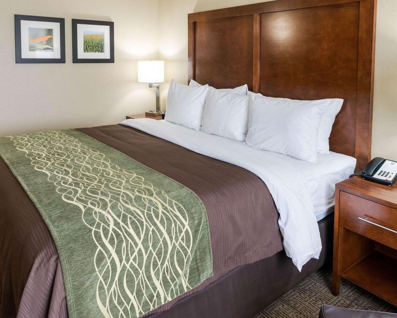 Room - Comfort Inn & Suites Rochester