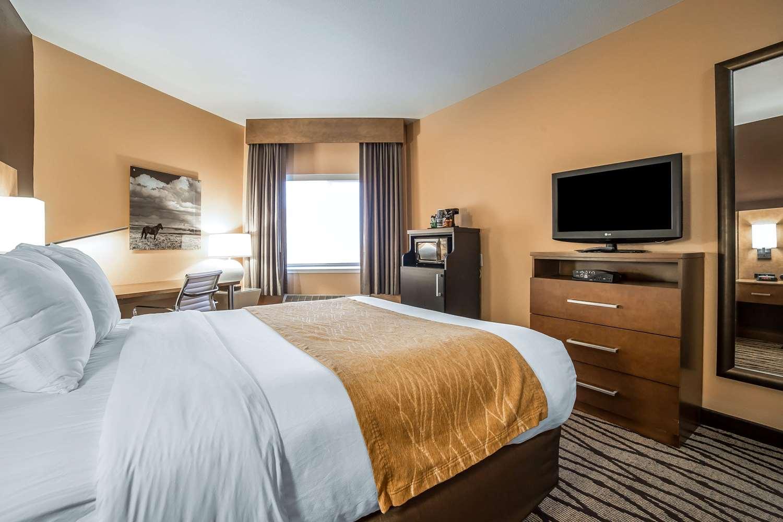 Room - Comfort Inn & Suites Great Falls Airport