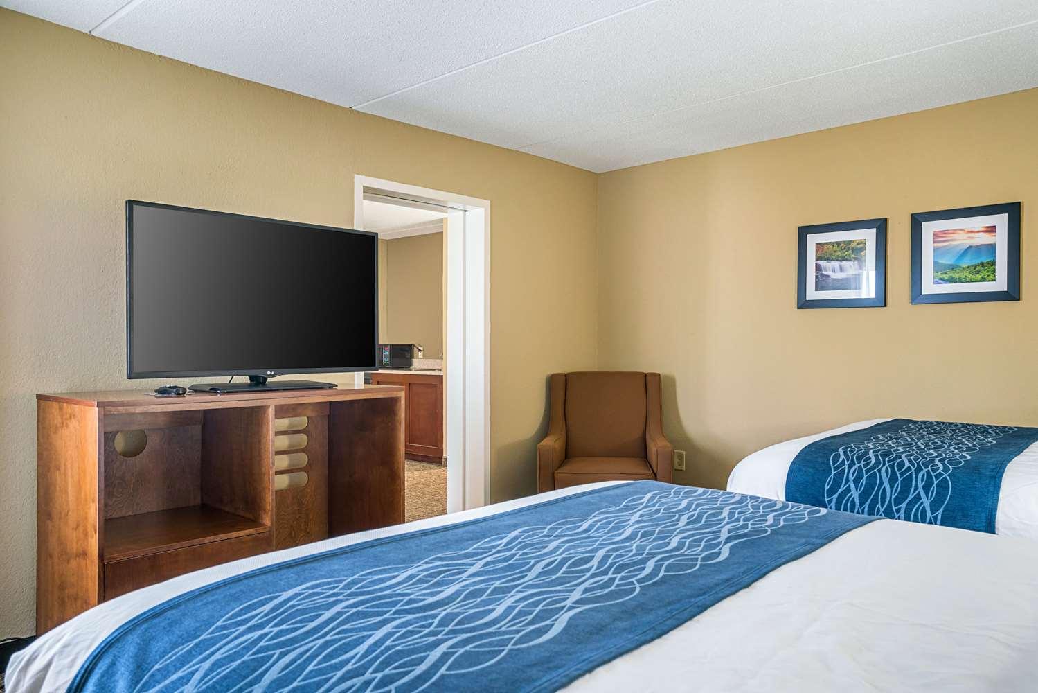 Suite - Comfort Inn Rocky Mount