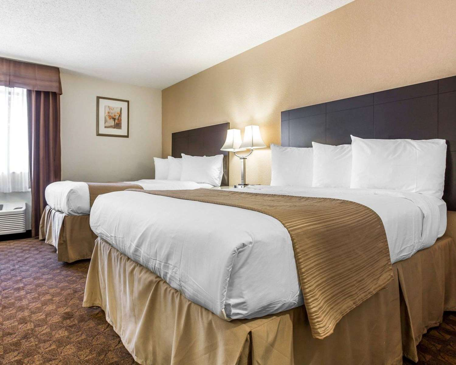 Room - Quality Inn & Suites Coliseum Greensboro