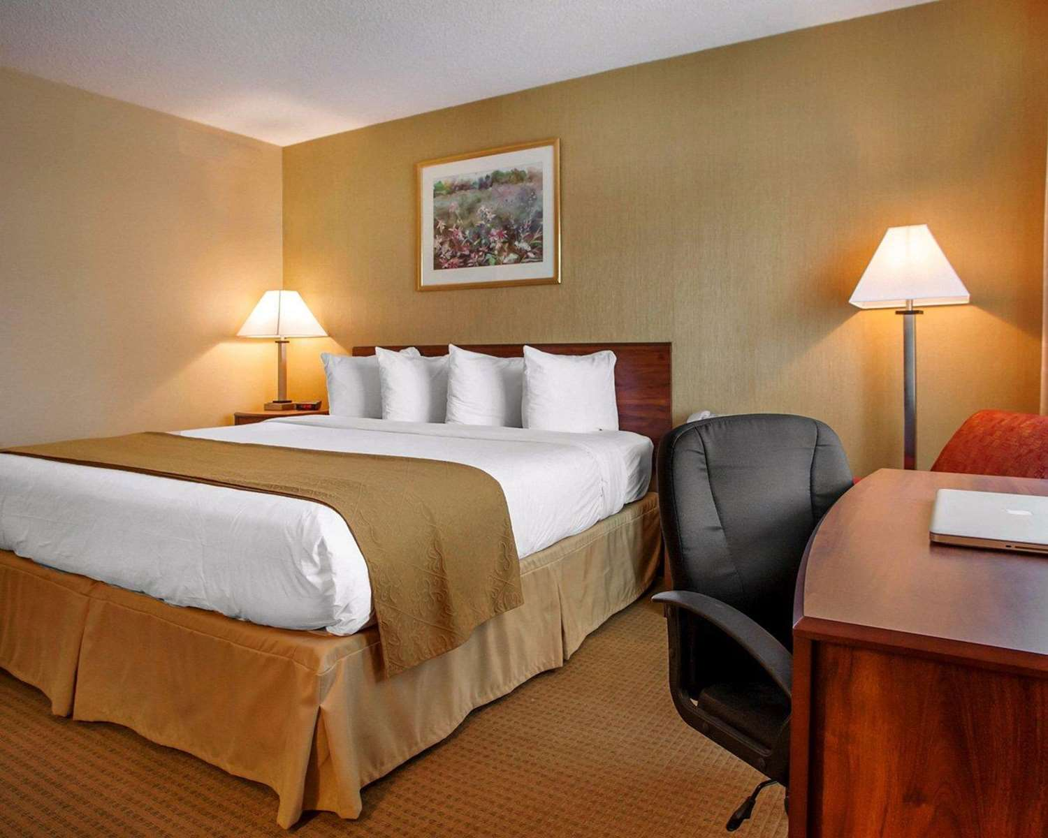 Room - Quality Inn Meadowlands Lyndhurst