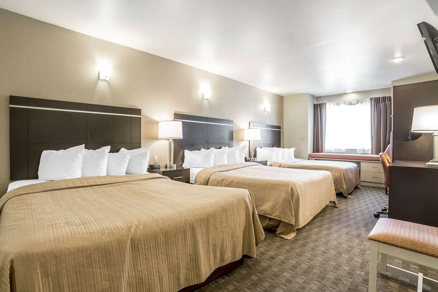 Room - Quality Inn & Suites Elko