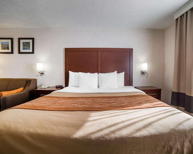 Room - Comfort Inn Elko